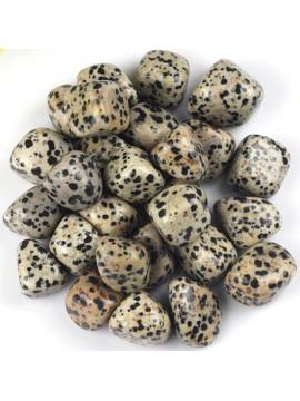 Dalmatian Jasper Tumbled Crystal