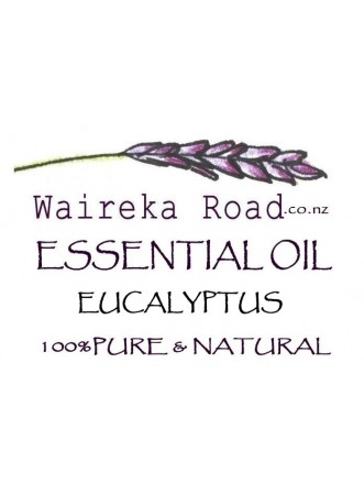 Eucalyptus Pure Essential Oil 10ml