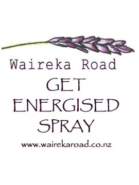 Get Energised Spray 100ml