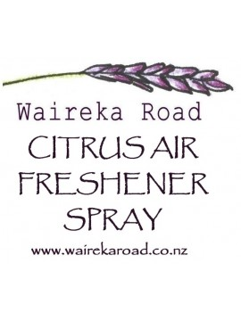Citrus Air Freshener 100ml